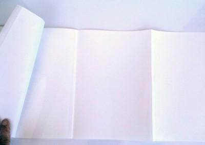 Fold Out Books